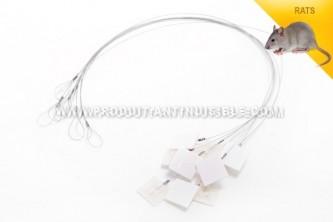 Câble de fixation universel pour postes d'appâtages anti souris en lot de 10