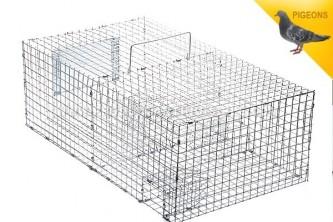 Anti Pigeons Cage Pliante