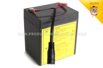 Batterie rechargeable 12 V wisebox