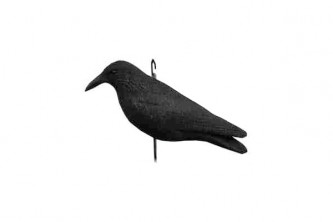 Anti pigeons effaroucheur corbeaux