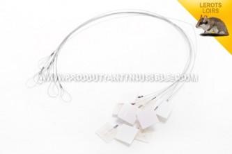 Câble de fixation universel pour postes d'appâtages anti lérots en lot de 10